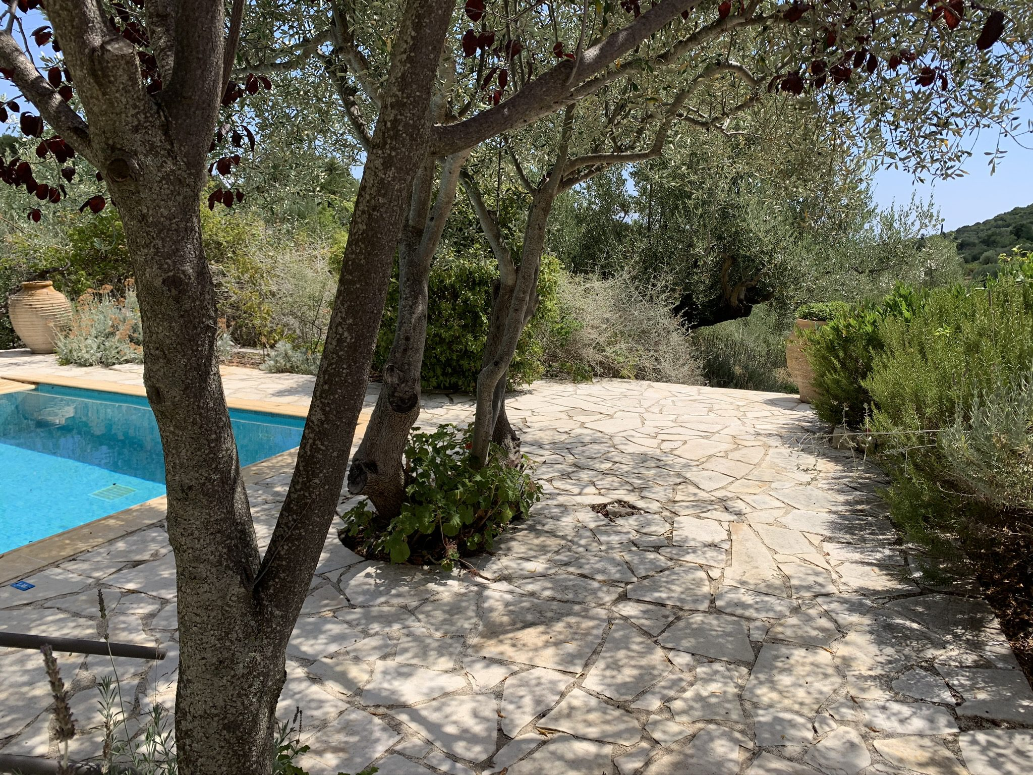 Terrace with swimming pool of property for sale in Ithaca Greece Vathi