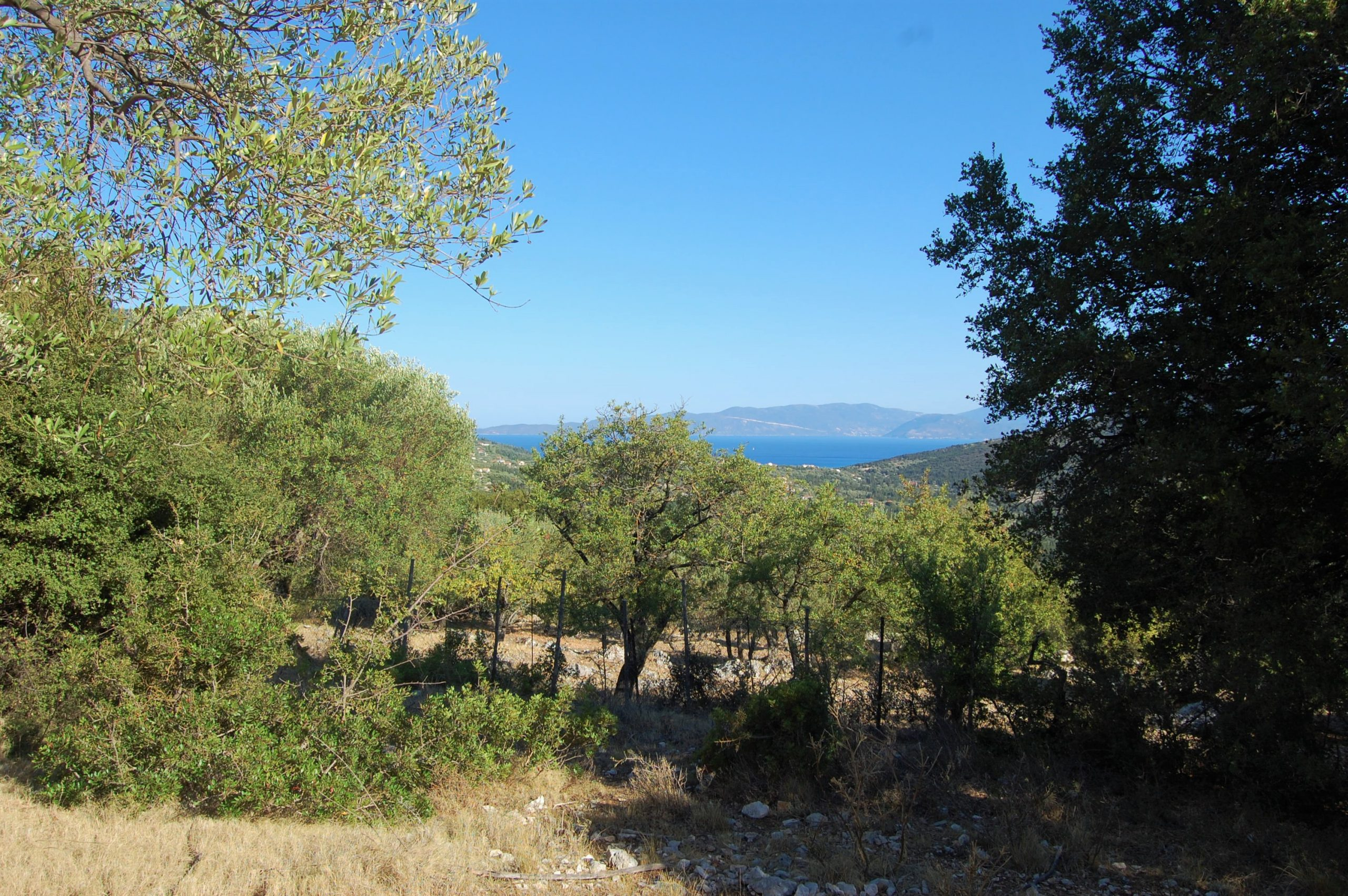 Terraced landscape an sea view from land for sale in Ithaca Greece, Stavros